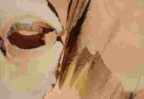 Huon Pine Edles tasmanisches Hart Holz Kiefer aus Australien