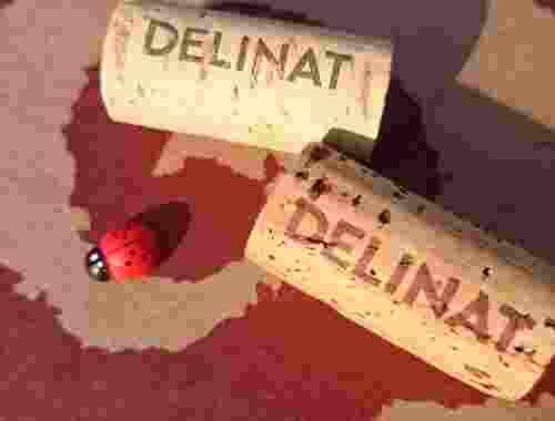 Bio Wein von Delinat Wein Korken