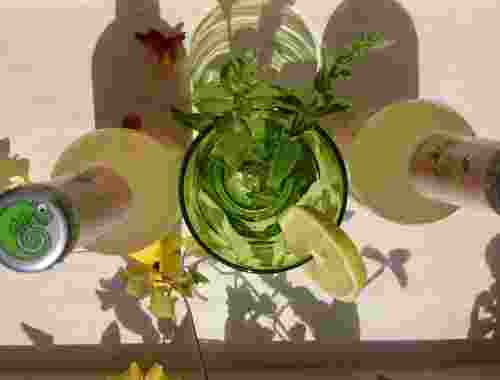 Erfrischungsgetränk 100% organic Paradise Mint now by Lammsbräu (3)