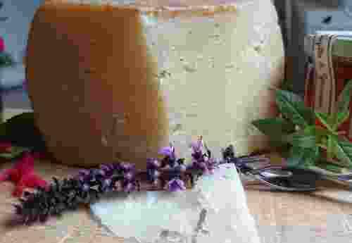 Schafskäse Pecorino Gran Riserva 24 Monate von Fattoria La Vialla Käse dekorativ angerichtet