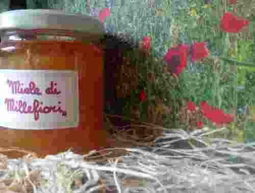 Tausendblütenhonig Miele di Millefiori von Fattoria La Vialla Honig im Glass von Fattoria La Vialla