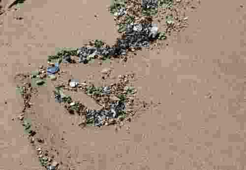 Plastik – das große Problem (1)