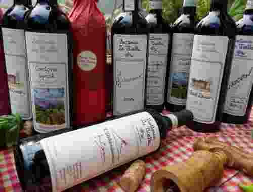 Rotweine der Fattoria La Vialla-- (14)